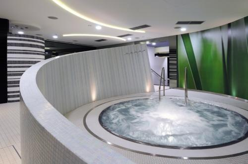 Domestic Spas & Hot Tubs 2013